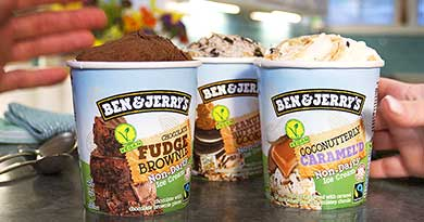 Three pints of Ben & Jerry's Non-Dairy Light Ice Cream